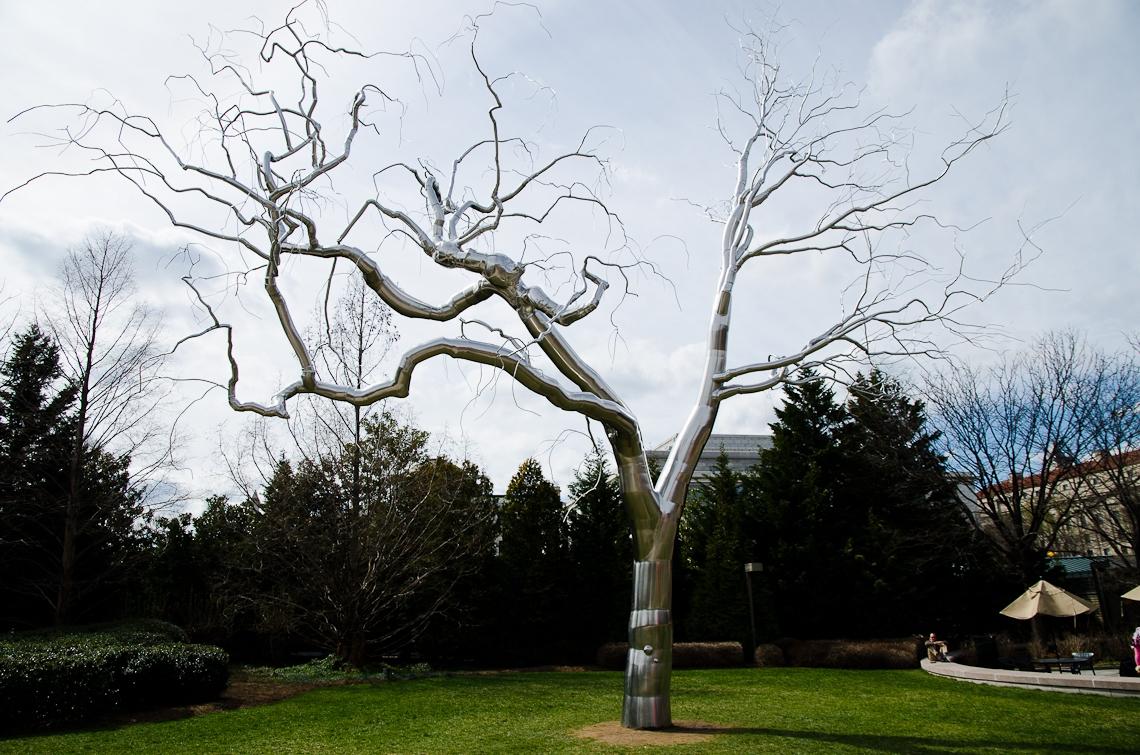 Washington, D.C., Art, Sculpture, Metal tree