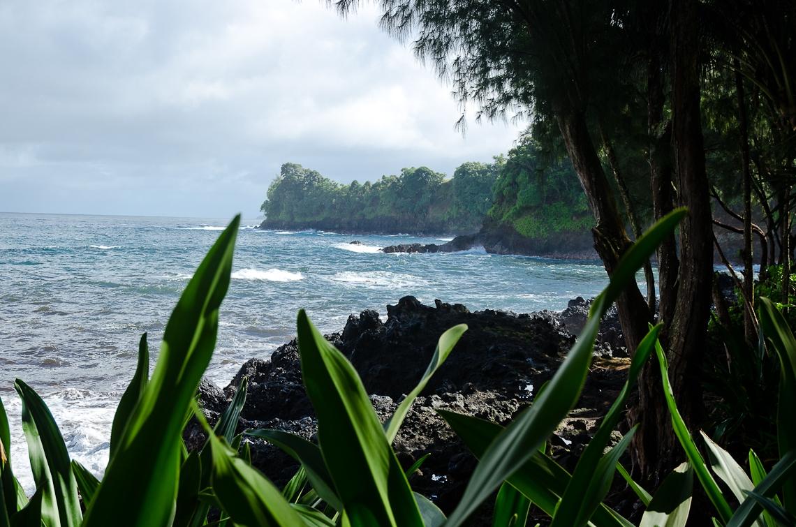 Hawaii_NewYear2017-6626