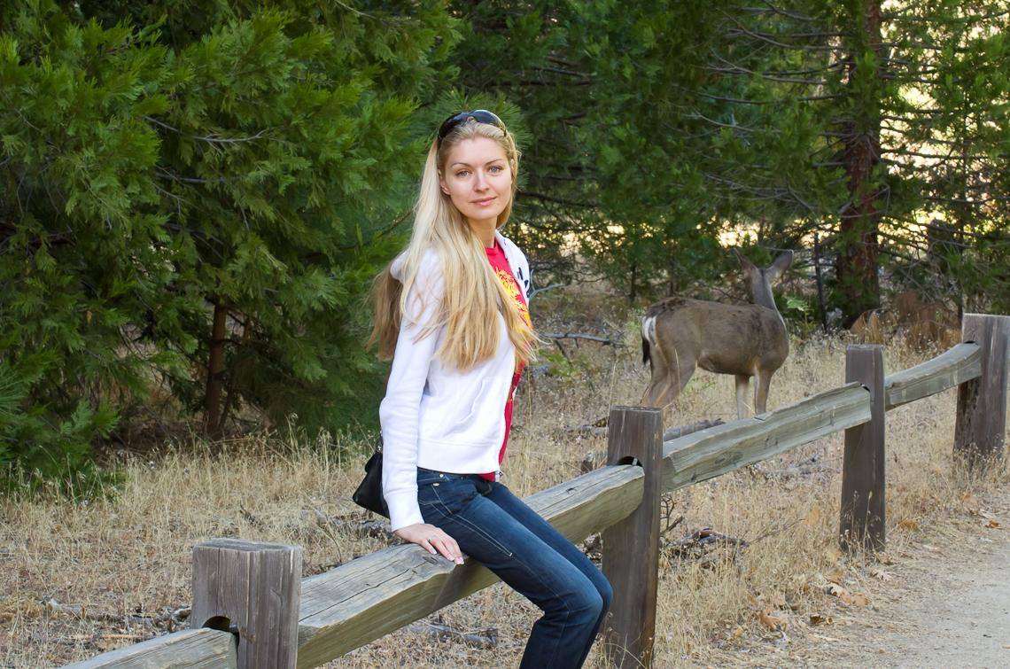 Йосемите, Олень / Yosemite, Deer