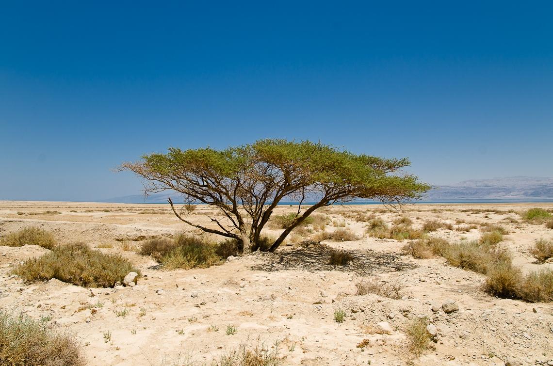 Israel, Dead Sea, Мертвое море