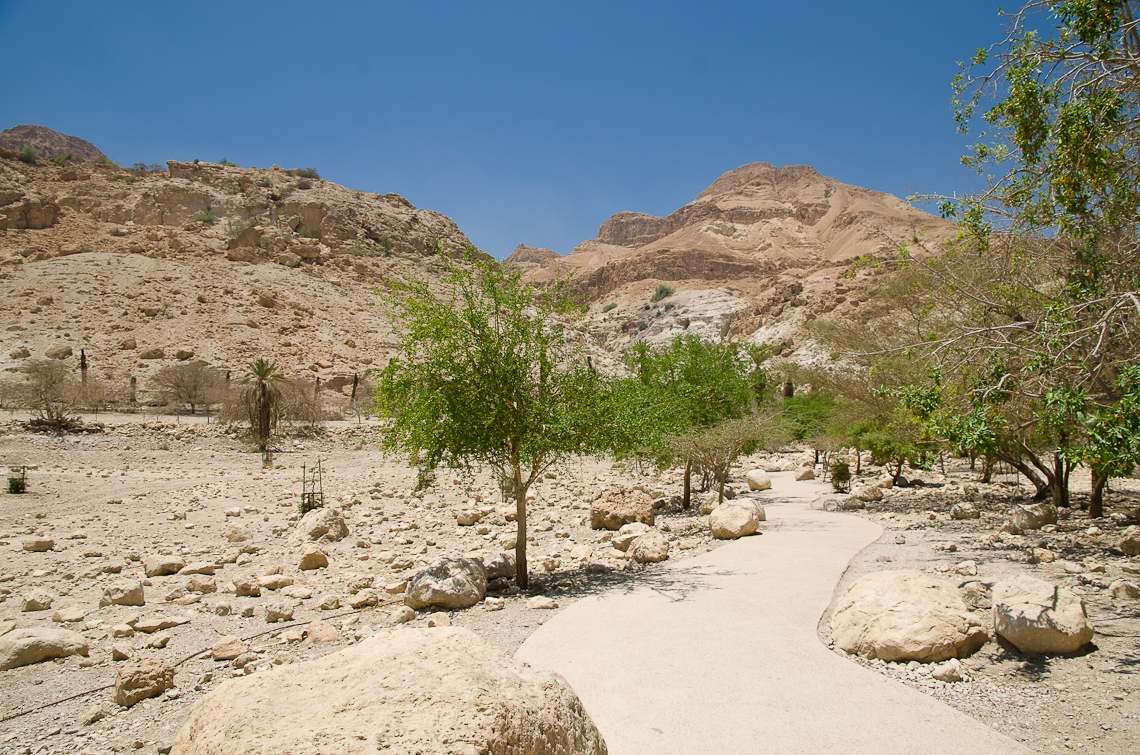 Israel, Dead Sea, Ein Gedi, Мертвое море, Эйн-Геди