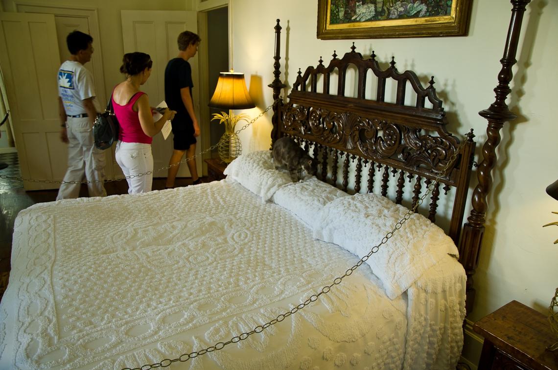 Key West, The Ernest Hemingway Home and Museum, Cats, Snowball, Эрнест Хэмингуэй, коты, Снежок, Ки Вест
